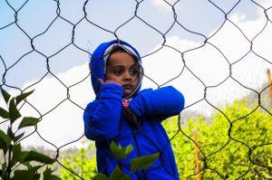 https://almere.pvda.nl/nieuws/geen-kinderen-meer-in-isoleerruimtes-jeugdzorg/
